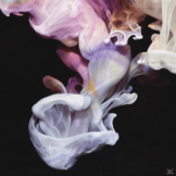 Simian Mobile Disco - Murmurations (2LP) - (Vinyl)