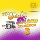 VARIOUS - ZYX Italo Disco Collection 3 - (Vinyl)